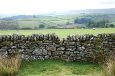dartmoor wall 2